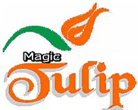 Magic Tulip Beach