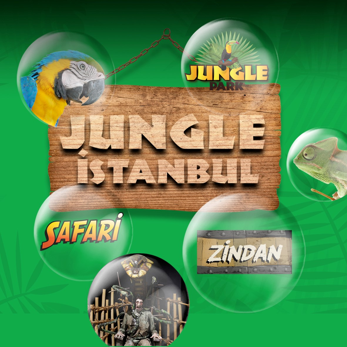 Jungle Park – Dungeon – Safari