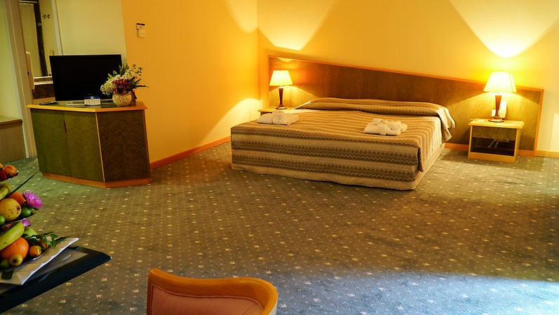 ALTİS RESORT HOTEL262584