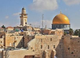 Kudüs Turu 7