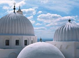 Tunus Turu 11 (VİZESİZ)