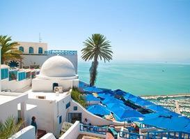 Tunus Turu 2 (VİZESİZ)