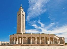 Tunus Turu (VİZESİZ)