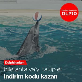 ;;dolphinarium yunus gösterileri indirim fırsatı
