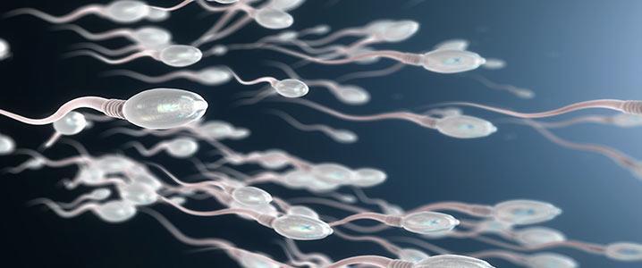 TESA (Testicular Sperm Aspiration)