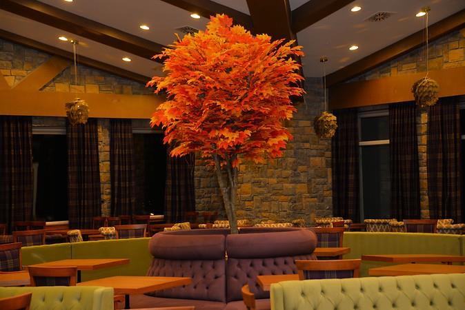 Bof HotelsUludağ Ski & Conv Resort202874