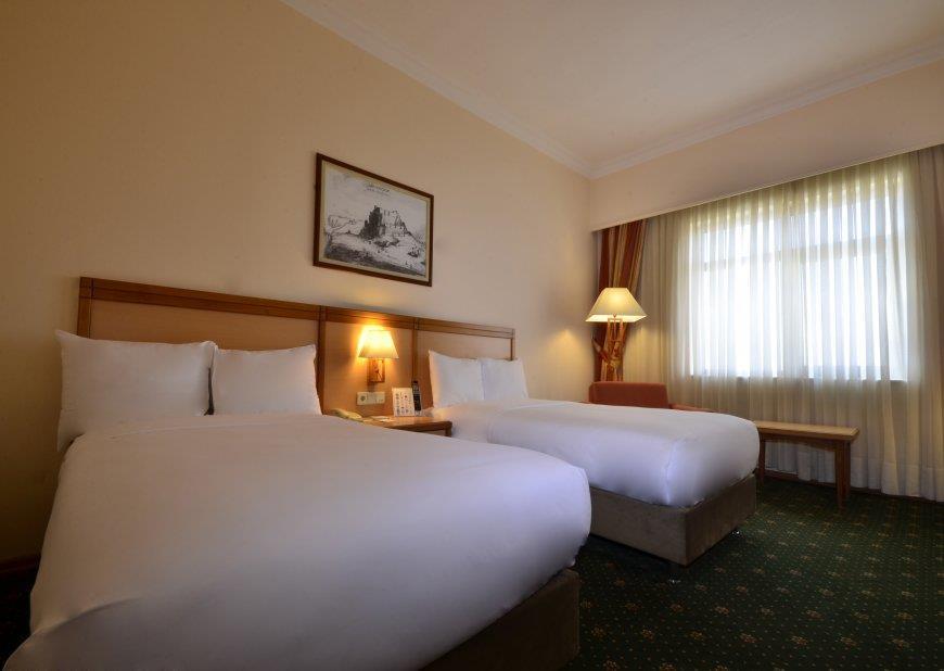 Polat Erzurum Resort Hotel203358