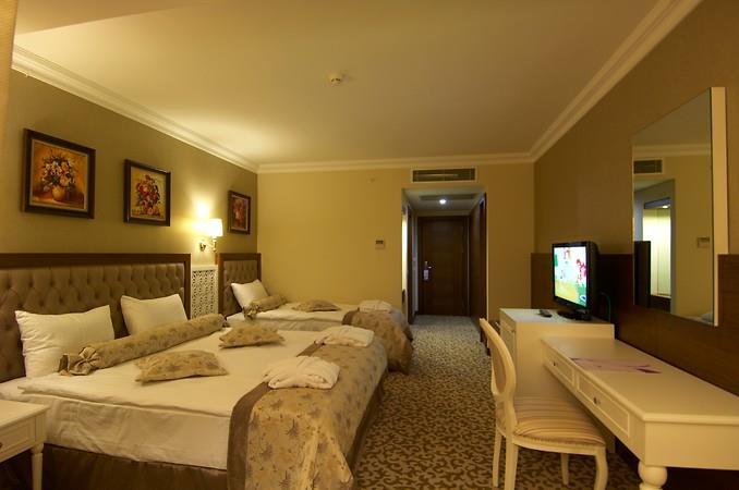 Safran Thermal Resort204561