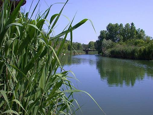 Göksu Nehri