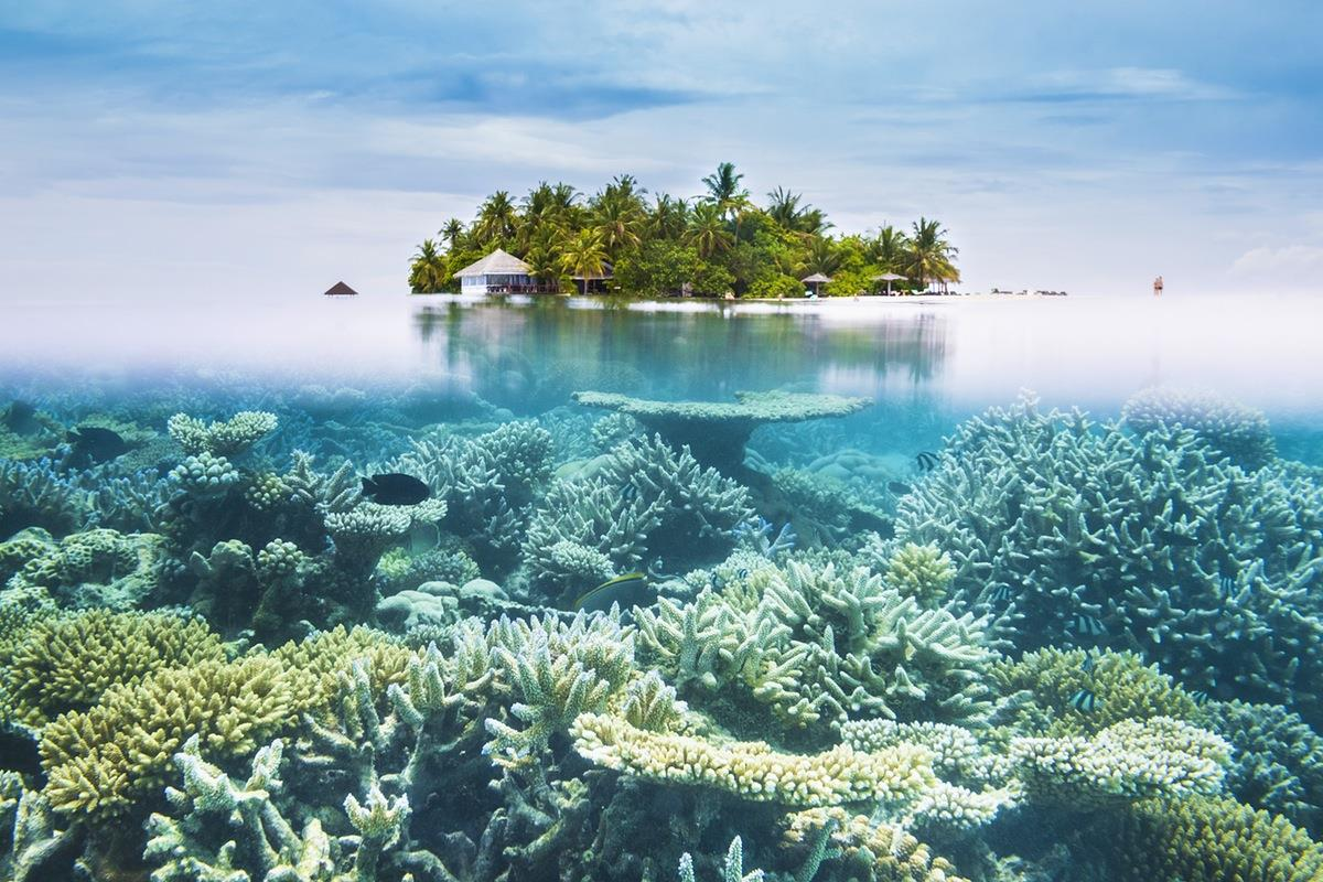 Maldivler Holiday Island Resort