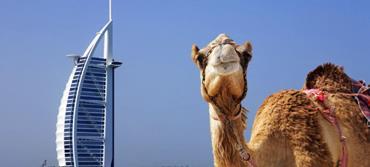 Dubai: Çölün Ortasında Metropol