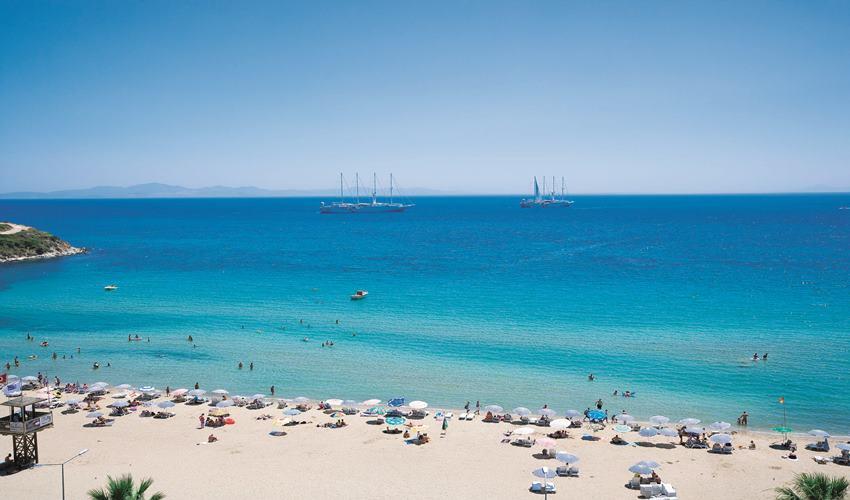 Orion Beach Hotel 202613